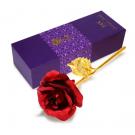 24K zlatá ruža 3