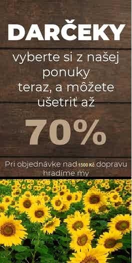 darceky_pandacz_leto1